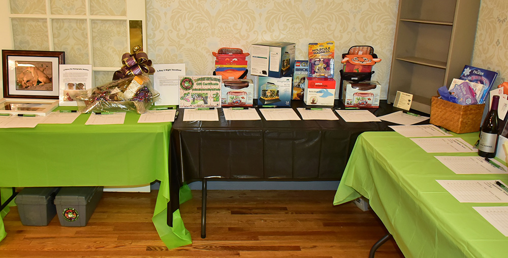 Silent auction items to fund the animal sanctuary